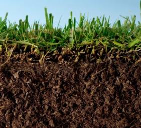 Importancia del suelo en la producci n agr cola for Caracteristicas de los suelos