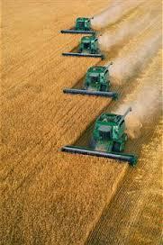 AAG_recuperación agricultura intensiva